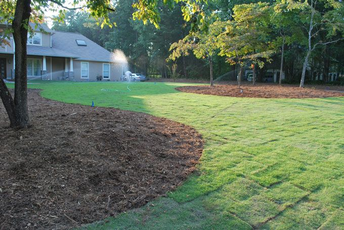 landscaping peachtree city with new sod