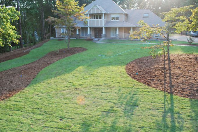 landscaping is complete with new sod installation
