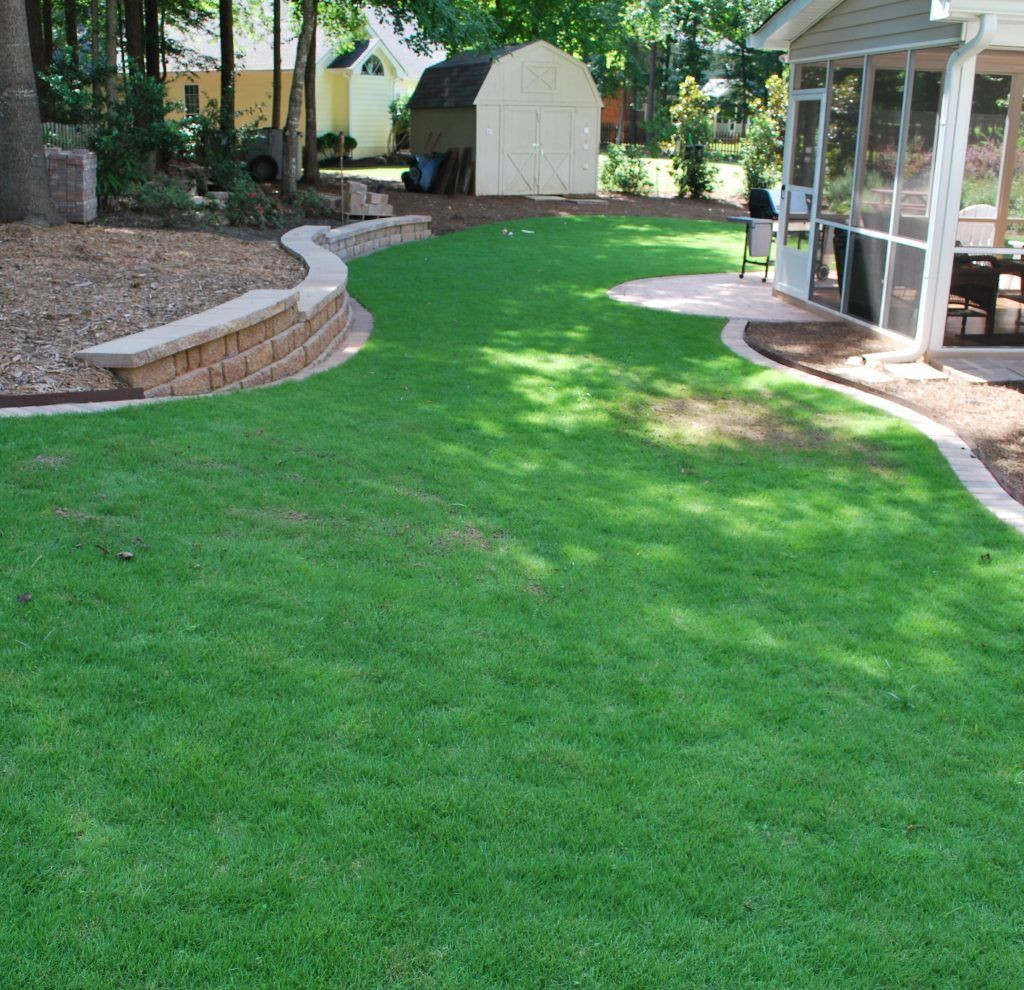 new sod lawn renovation
