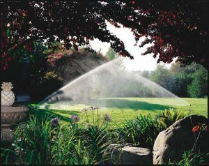 rainbird sprinkler systems installed in Fayetteville, peachtree city, newnan