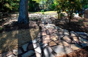 rock slab walkway with ground cover