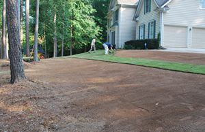 new sod on prepared soil